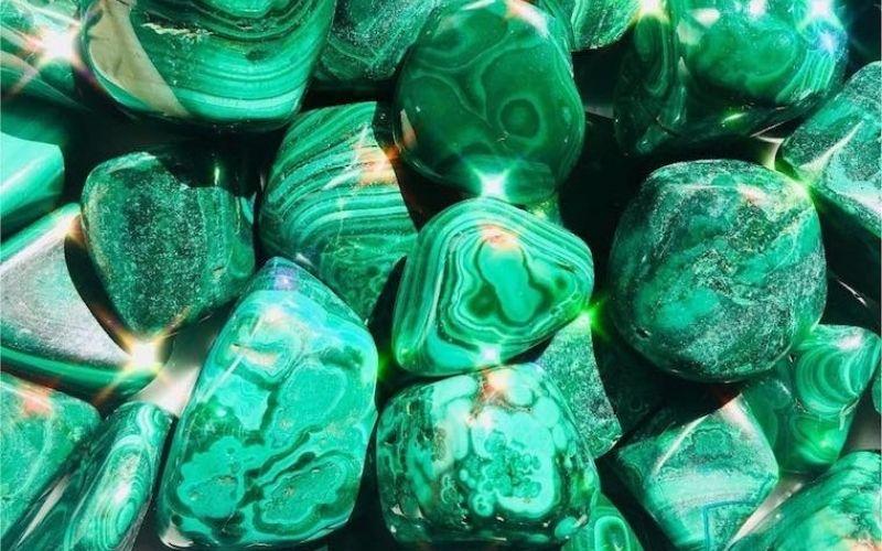 Ứng Dụng Malachite Green