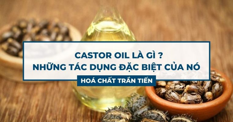 Castor Oil Là Gì