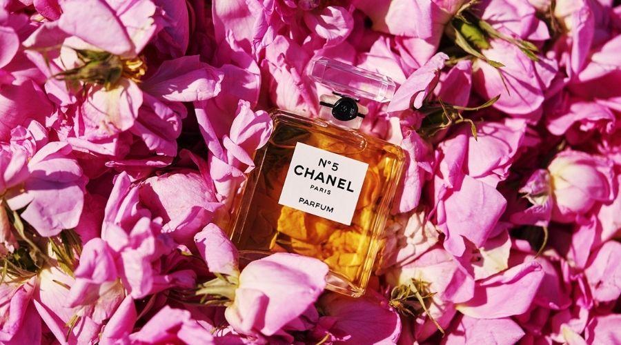 Nước Hoa No5 Chanel Là Kết Quả Của Tinh Túy Đất Trời