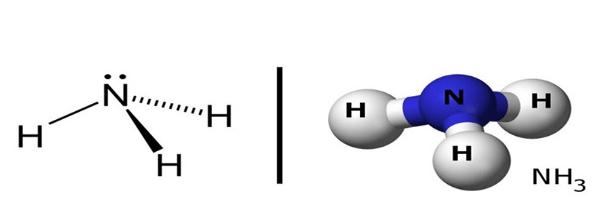 Cấu tạo phân tử NH3