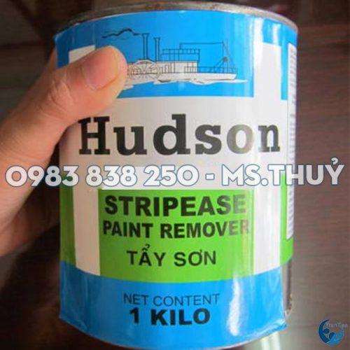 Tẩy Sơn Hudson
